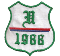 Alter Rapid 1988 ultras wien Vintage Fanclub Trikot Aufnäher Abzeichen patch