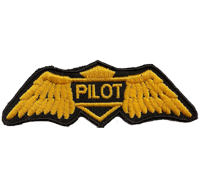 Golden Wings US Air Force Pilot Luftwaffe Flieger Piloten Aufnäher Patch