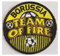 Borussia Dordmund BVB 09 Team of Fire Meister Trikot Fanclub Aufnäher